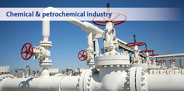 Chemical & petrochemical industry